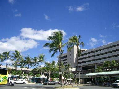 hawaii0024.jpg