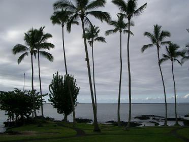 hawaii0322.jpg